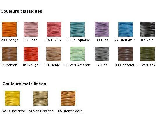 Tavolozza di colori per il laccio di cuoio