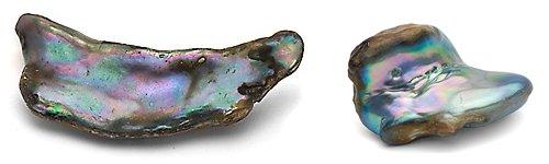 Perle abalone