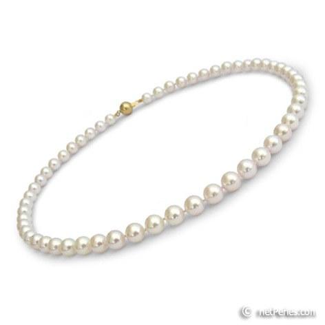 Collana di perle di coltura Akoya, 40 cm, 7-7.5 mm, bianche