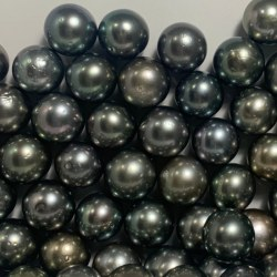 Perla di coltura di Tahiti nera 12-13 mm qualità AA