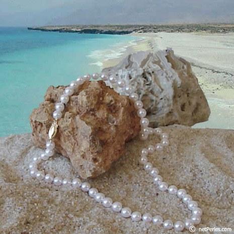 Collana di perle di coltura Akoya, 45 cm, 6.5-7 mm, bianche
