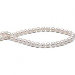 Collana di perle di coltura Akoya, 40 cm, 7.5-8 mm, bianche