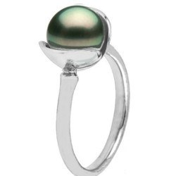 Anello in Argento 925 con perla di Tahiti 8-9 mm AA+ o AAA
