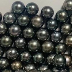 Perla di coltura di Tahiti nera 11-12 mm qualità AA