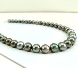 Collana 44 cm Perle nere di Tahiti da 10 a 12 mm qualità AA/AA+ multicolori